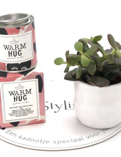 Stylin cadeau artikelen Rijnsburg een kadootje speciaal voor jou geurkaars met plant en droogbloemen